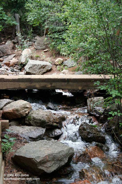 Stream and bridge