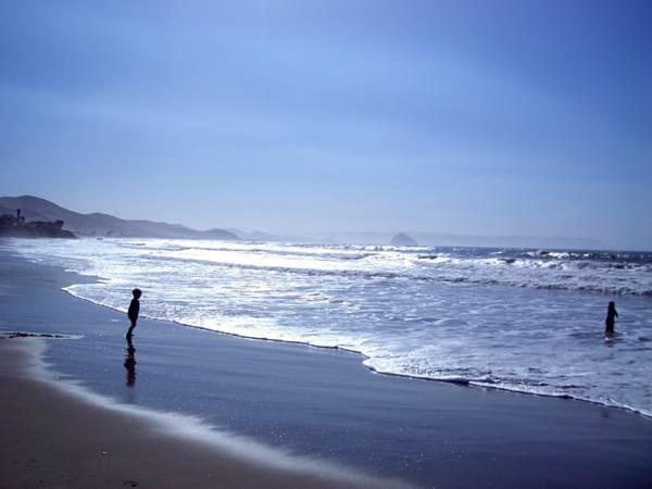 Cayucos beach.