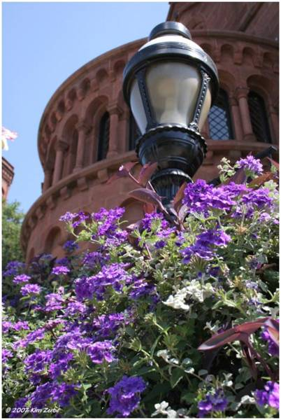 Lamp post at the Smithsonian Castle