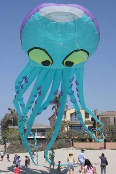 octo-kite
