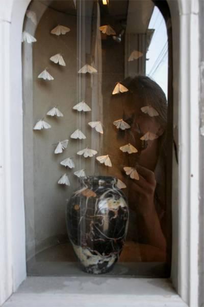 Moths, jar, my reflection