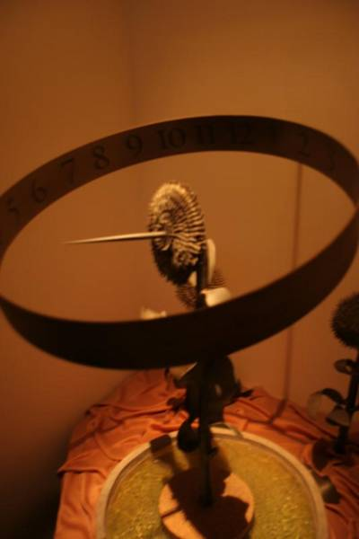 A sunflower sun dial thing of DEATH