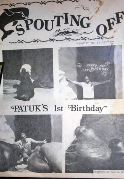 1979 walrus birthday