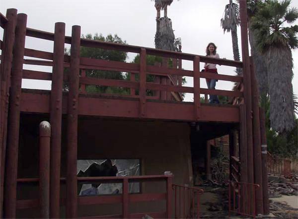 Janice on the bridges over the fish tank
