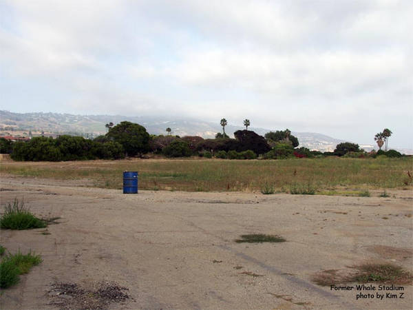 The site of the killer whale stadium