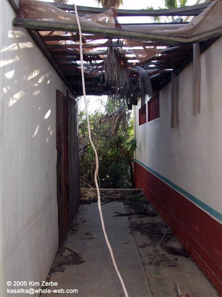 Pathway between locker rooms and Baja Reef