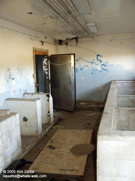 Fish prep room with 2nd door to freezer
