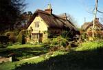 thatch-house