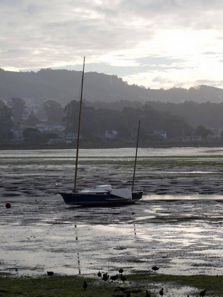 A stranded sailboat in Morro Bay.