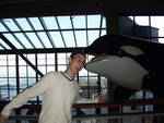 Brett gets attacked by an orca...