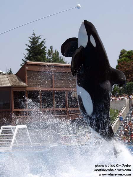 Ulises doing a target leap